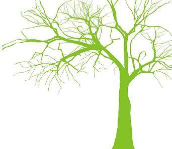 植树节的英文怎么说?